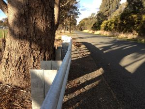In some instances, guardrails can be an alternative to removing trees.