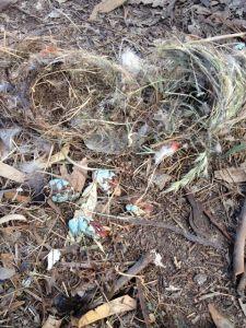 Phot of smashed eggs
