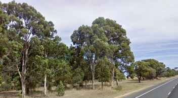 Google pic 2010 winchelsea colac